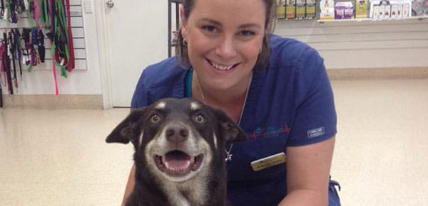 AES Noosaville saves Casey's life