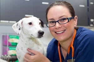 After Hours Veterinary Clinics & Animal Emergency Services