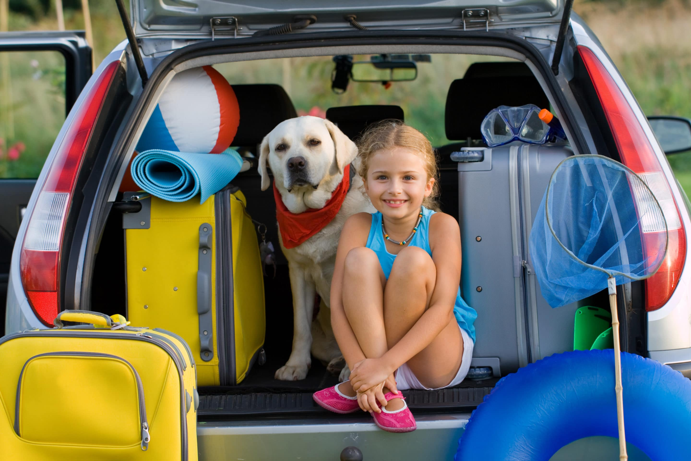 HOLIDAYING WITH YOUR PET