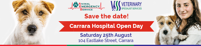 AES & VSS Celebrate 10 Years At Carrara | 24 Hour Vet