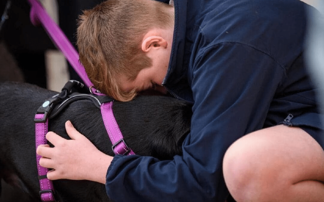 Henri the dog miraculously survived a house fire only to almost die from smoke inhalation